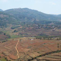 Die typische madagassische rote Erde