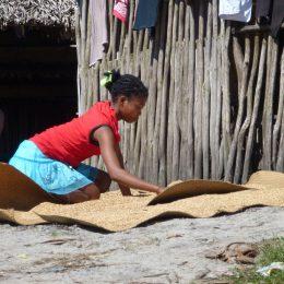 Mädchen beim Verteilen von Reis zur Trocknung