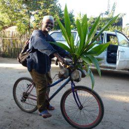 Frommer muslimischer Dorfvorsteher radelt vom Markt zurück in sein Dorf